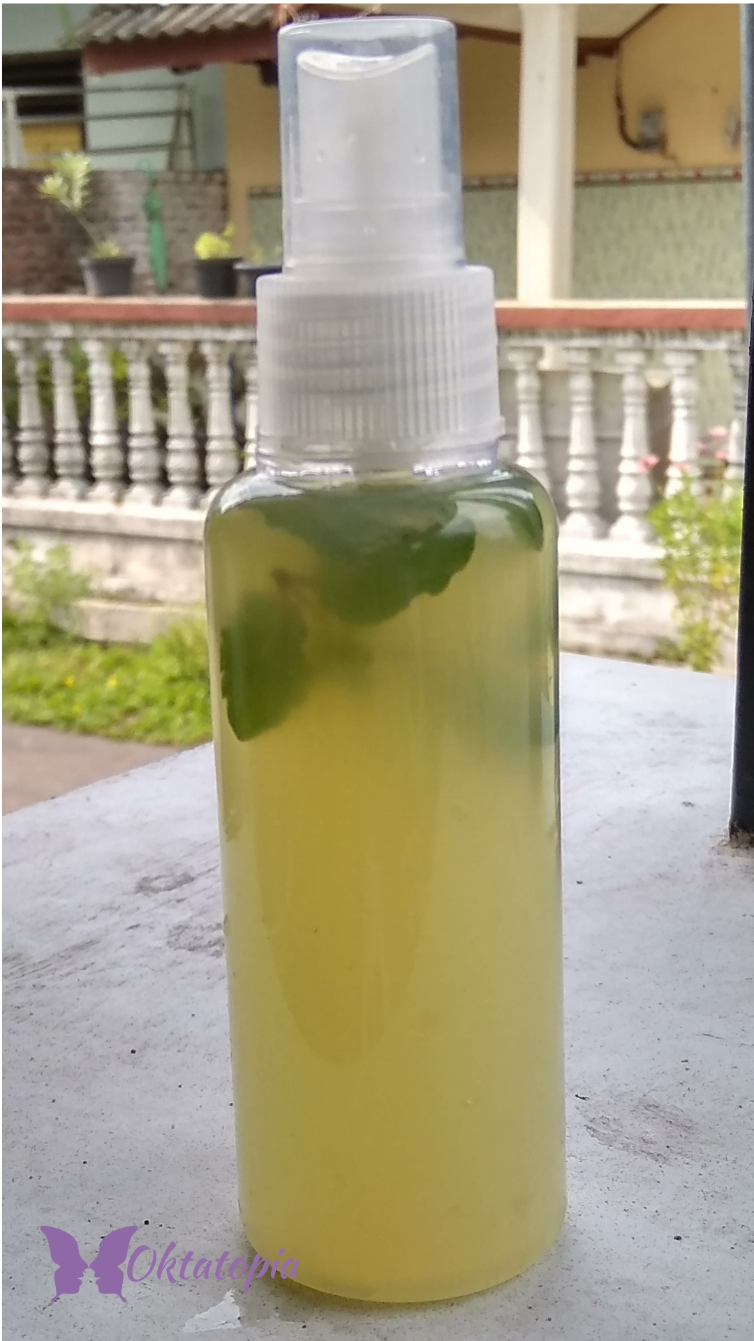 DIY Peppermint Cucumber Lime Face Mist